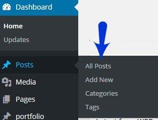 revise posts in wordpress