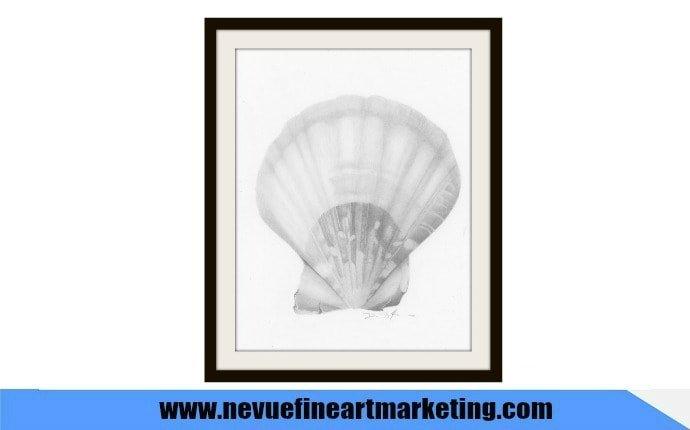 draw a seashell