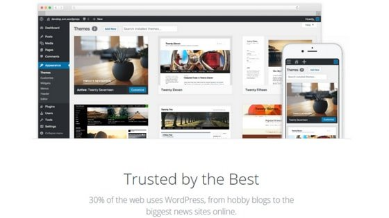 wordpress - Nevue Fine Art Marketing