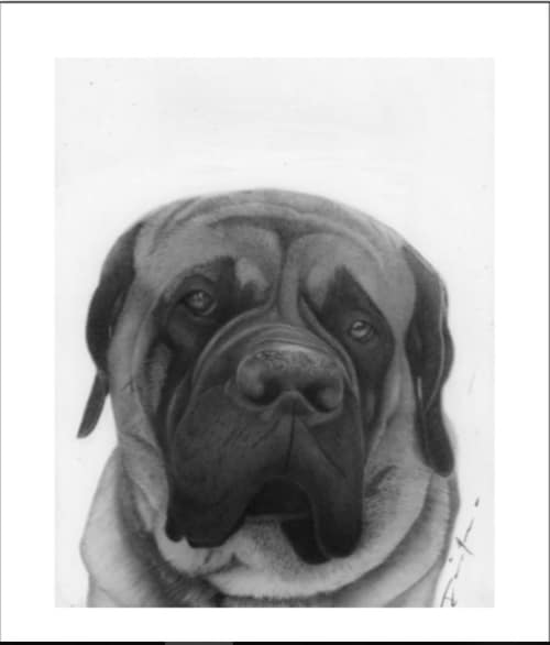 Happy Your Home Original Dog Pencil Drawing
