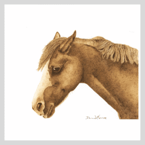 Sweet Dolly Pyrography Horse Drawing Fine Art Print