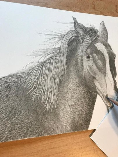 How To Keep Graphite Drawings Clean - While Drawing