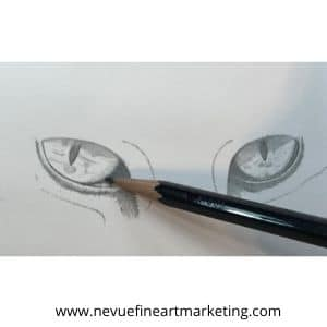 How To Draw Realistic Cat Eyes