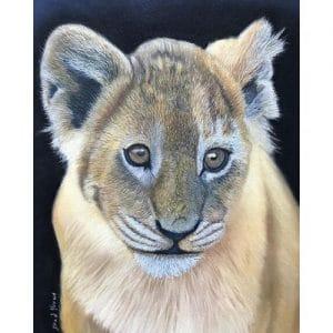 Cub Wildlife Pastel Painting