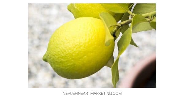 lemon reference image