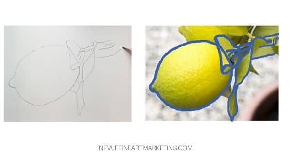 finish lemon sketch