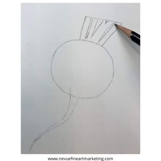 draw stems