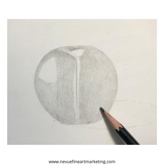 continue adding graphite to the darker areas
