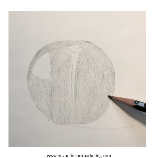 finish the first coat of graphite
