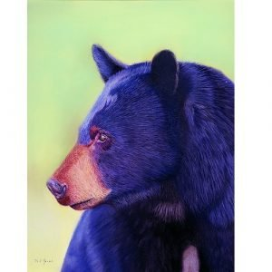 Black Bear Pastel Painting