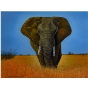 Passing Through Elephant Pastel Painting giclee prints